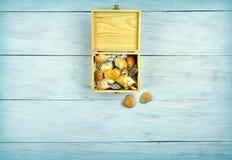 Boîte en bois avec des coquilles de mer Vue supérieure photographie stock