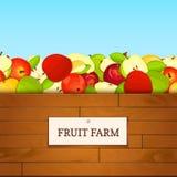 Boîte en bois avec des fruits de pomme Illustration de carte de vecteur Image libre de droits