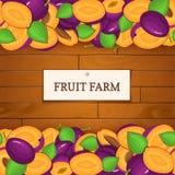 Boîte en bois avec des fruits de prune Illustration de carte de vecteur Embarque le fond en bois, la frontière avec des prunes po Image stock