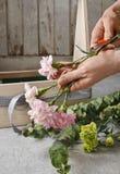 Boîte en bois avec les oeillets roses et jaunes - cours Photo stock