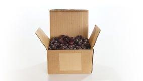 Boîte en carton ondulé ouverte avec des haricots noirs (phaseolus vulgaris) à l'intérieur sur le fond blanc Photo stock