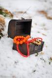Boîte magique de Noël avec le conte de fées d'hiver de bijoux Images libres de droits