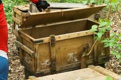 Boîte, planches, bois, forêt, découverte, ouverte, couverture, en bois Image stock