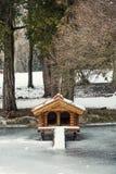 Boîte pour des oiseaux aquatiques nichant en parc d'hiver Image stock