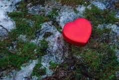 Boîte rouge en forme de coeur sur l'herbe Images libres de droits