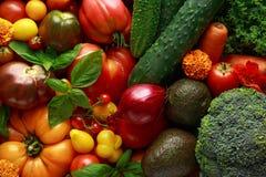 Boîte végétale organique avec tomates-cerises de grandes, basilic, concombres, oignons rouges, brocoli et avocat Photos libres de droits