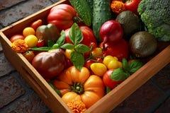 Boîte végétale organique avec tomates-cerises de grandes, basilic, concombres, oignons rouges, brocoli et avocat Image stock