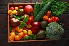 Boîte végétale organique avec tomates-cerises de grandes, basilic, concombres, oignons rouges, brocoli et avocat Photo libre de droits