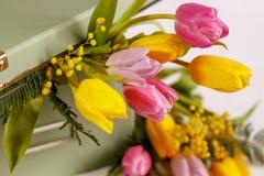 Boîte vert clair avec les tulipes de ressort sur le fond blanc Photos libres de droits
