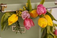 Boîte vert clair avec les tulipes de ressort sur le fond blanc Image libre de droits