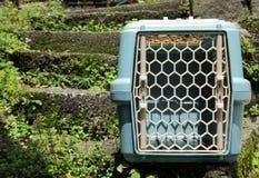 Boîte vide de transport d'animal familier sur les escaliers extérieurs Images stock