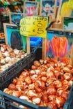 Boîtes avec des ampoules au marché de flottement de fleur à Amsterdam Photo libre de droits