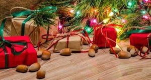 Boîtes avec des cadeaux et des noisettes sous l'arbre de Noël Image libre de droits