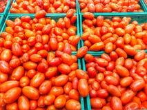 Boîtes complètement de tomates Photo libre de droits