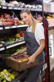 Boîtes de transport assez blondes de légumes frais Photographie stock libre de droits
