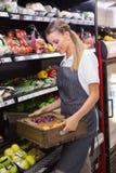 Boîtes de transport assez blondes de légumes frais Photographie stock