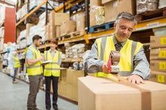Boîtes en carton de cachetage de travailleur d'entrepôt pour l'expédition Image stock