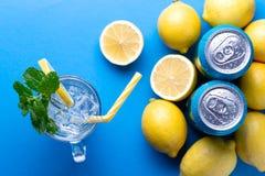 Boîtes et citrons de soda photos libres de droits