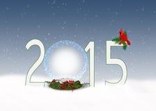 Boże Narodzenia 2015 śnieżnych kul ziemskich Zdjęcia Royalty Free