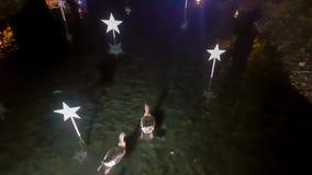 Bo?e Narodzenia dekorowali staw z kaczkami i gooses p?ywa? Pi?kny sceniczny zdjęcie wideo