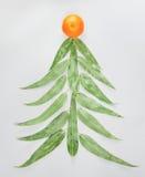Boże Narodzenia i nowego roku drzewo robić eucaliptus opuszczają mandarynkę na jasnopopielatym tle Mieszkanie nieatutowy Wakacyjn Fotografia Stock