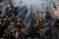 Boże Narodzenia i nowego roku wizerunek pocztówka Lasowi Jedlinowi rożki na ogieniu Zdjęcie Royalty Free
