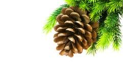 boże narodzenia konusują drzewa obraz royalty free