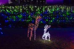 Boże Narodzenia mieścą dekoracje Obrazy Royalty Free