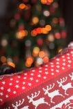Boże Narodzenia ornamentują z rogaczem Obrazy Royalty Free
