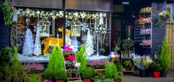 Boże Narodzenia robią zakupy okno w Ludlow Fotografia Royalty Free