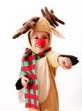boże narodzenia Rudolph zdjęcie royalty free