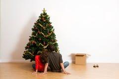 Boże Narodzenia: Siedzący i Patrzejący Skończonego drzewa zdjęcia royalty free