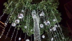 Boże Narodzenia w zwrotnikach Zielona tropikalna choinka z światłami i sreber baubles obraz stock