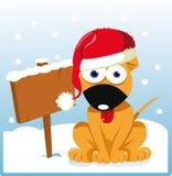 Boże Narodzenie śliczny Pies Fotografia Royalty Free
