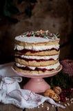 Boże Narodzenie Ablegrujący tort z Malinowym dżemem i Batożącą śmietanką obrazy stock
