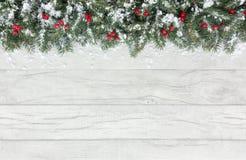 Boże Narodzenie granica z śnieg Zakrywającą Czerwoną jodłą i jagodami Fotografia Royalty Free