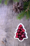 Boże Narodzenie granica z cranberries, świerczyny gałąź Obrazy Stock