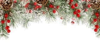 Boże Narodzenie granica zielona jodła rozgałęzia się z śniegiem, czerwonymi jagodami i rożkami odizolowywającym na bielu, zdjęcie royalty free