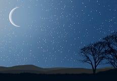 boże narodzenie gwiazdy ilustracji
