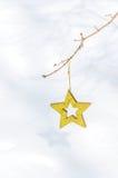 Boże Narodzenie gwiazdy w śniegu 3 Obraz Royalty Free