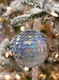 boże narodzenie płytkę ornamentu srebra Zdjęcie Royalty Free