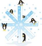 boże narodzenie pingwiny Fotografia Stock