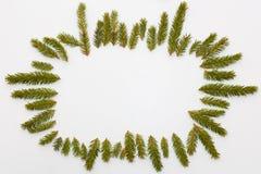 Boże Narodzenie rama jodła rozgałęzia się na białym tle Obraz Royalty Free