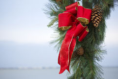 Boże Narodzenie sosny i łęku rożki obrazy royalty free