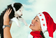Boże Narodzenie wesoło szczeniak zdjęcie royalty free