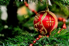 Boże Narodzenie zabawka na gałąź Zdjęcie Royalty Free