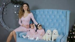 Bożenarodzeniowa atmosfera, śliczna matka z córkami pozuje przy fotografii sesją z dwa szczeniakami na błękitnej leżance zbiory