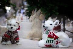 Bożenarodzeniowa atmosfera, nowy rok dekoracje Santa claus obraz stock