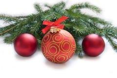 Bożenarodzeniowa czerwona piłka, gałązka jodła Zdjęcie Stock