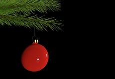 Bożenarodzeniowa dekoraci gałąź z czerwonym bauble na czarnym tle z miejscem dla teksta 3d odizolowywający odpłacający się wideo  Zdjęcie Royalty Free
